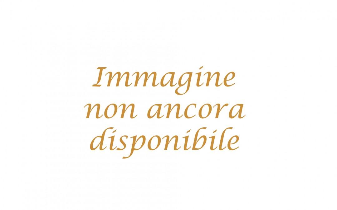 img_non_disp